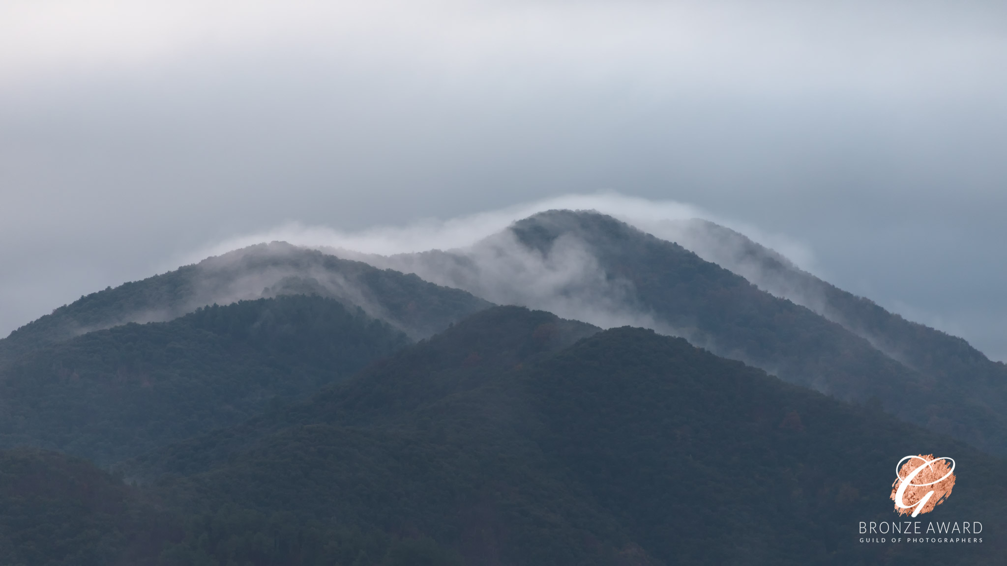 Mist over a forested mountain top in the Parc des Cevennes, France