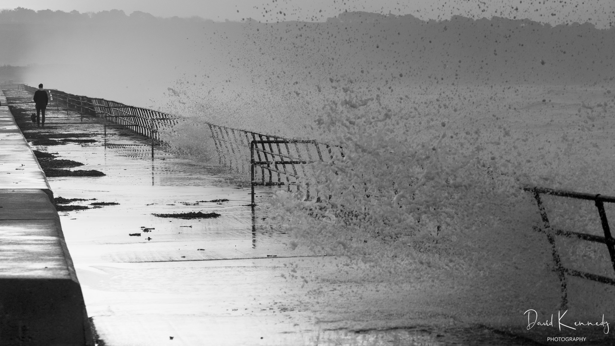 A dog and its owner walking away along a sea wall with waves crashing over the wall